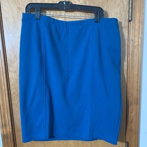 Blue Stretch Skirt